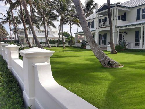 Ein Rasen wie ein grüner Velour-Teppich