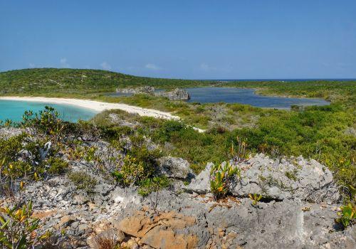 Leider hat der See kein Süßwasser, die ganze Insel ist rappeltrocken.