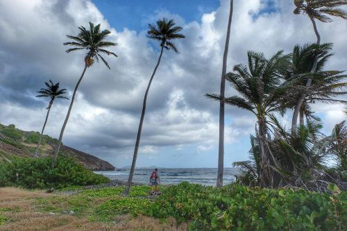 Spaziergang zur Ostküste der kleinen Insel